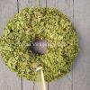 Szárított, zöld hortenzia ajtókoszorú
