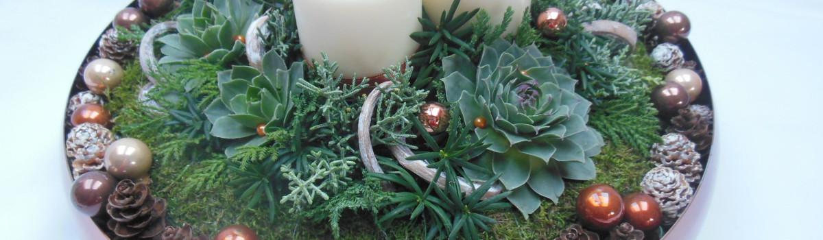 Karácsonyi asztaldísz kövirózsával