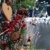 Karácsonyi rendezvénydekoráció MOM Sport