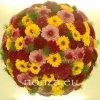 Virággömb vegyes színekkel