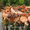 Moha szív narancsos-barnás színű díszítéssel